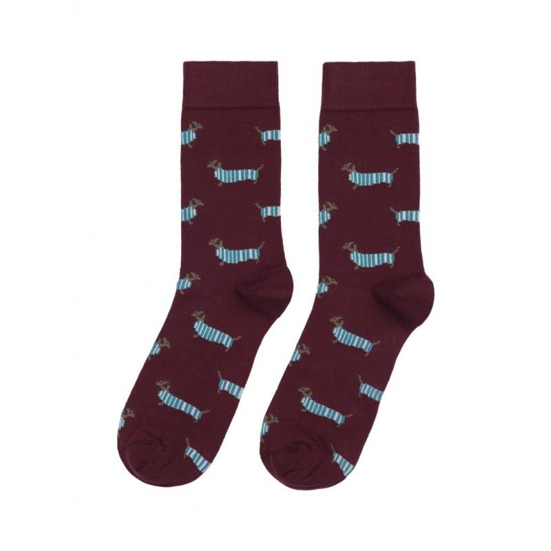 Calcetines Socksandco Teckel a la venta en El Miracle tienda en Valencia